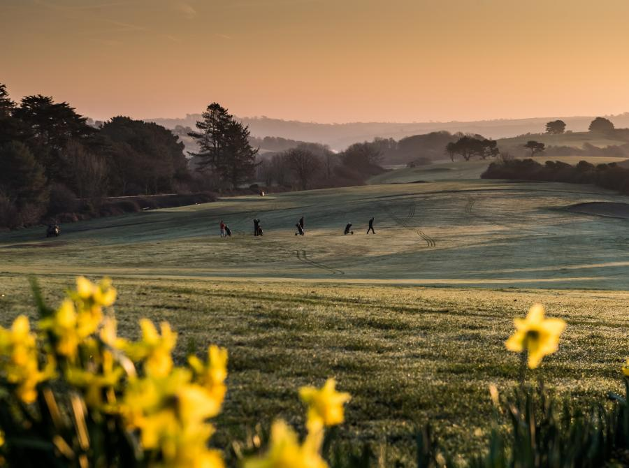view with daffodils and golf course carlyon